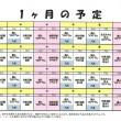平成29年3月1日からの『生活介護 ココロステッキ』の予定表です。