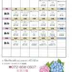 平成29年6月活動予定表(障がい者デイサービス『生活介護 ココロステッキ』)
